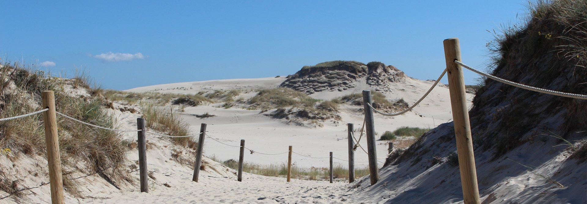 domki przy plaży Łeba